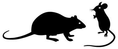 Black rat clipart 2