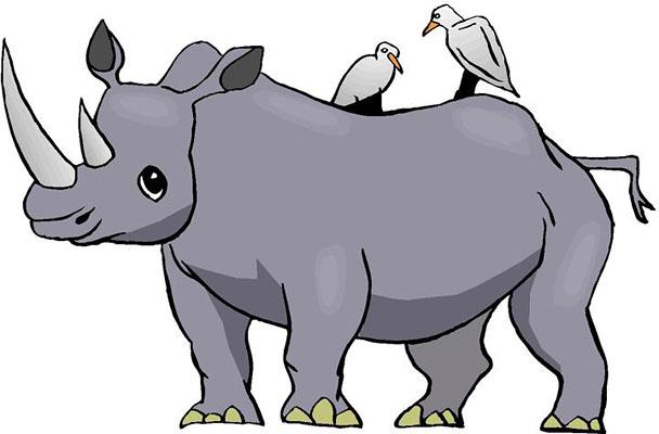 Black Rhino Janet Shillingburg S Webquest