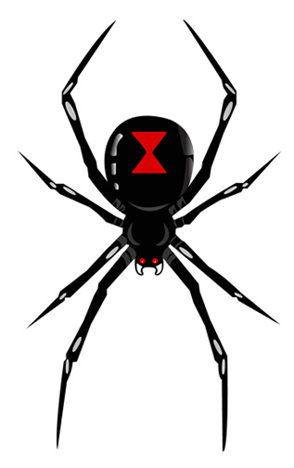 Black widow clipart - .