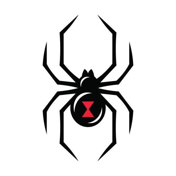Black widow spider icon vector art illustration