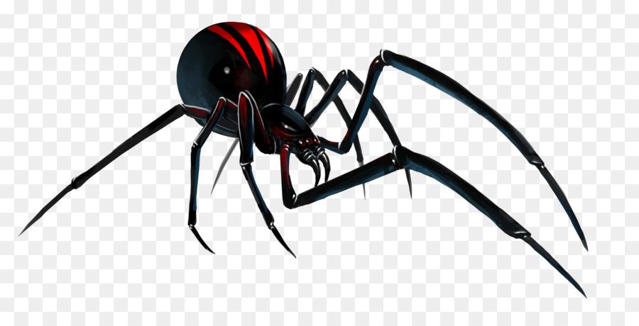 Southern black widow Redback spider Clip art - Black Widow Spider PNG File