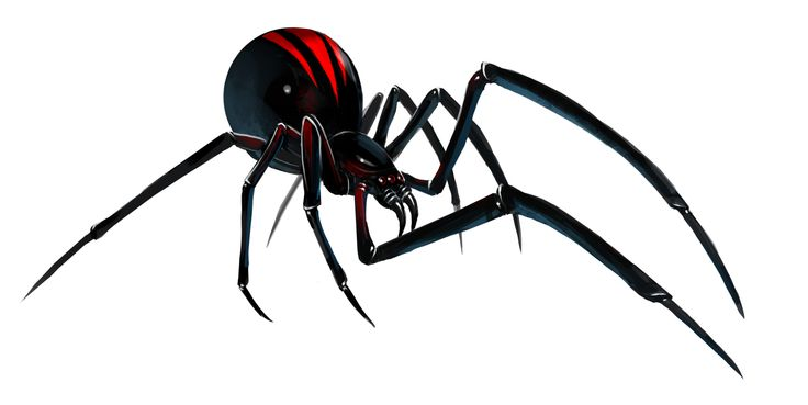 Black Widow Web Clip Art
