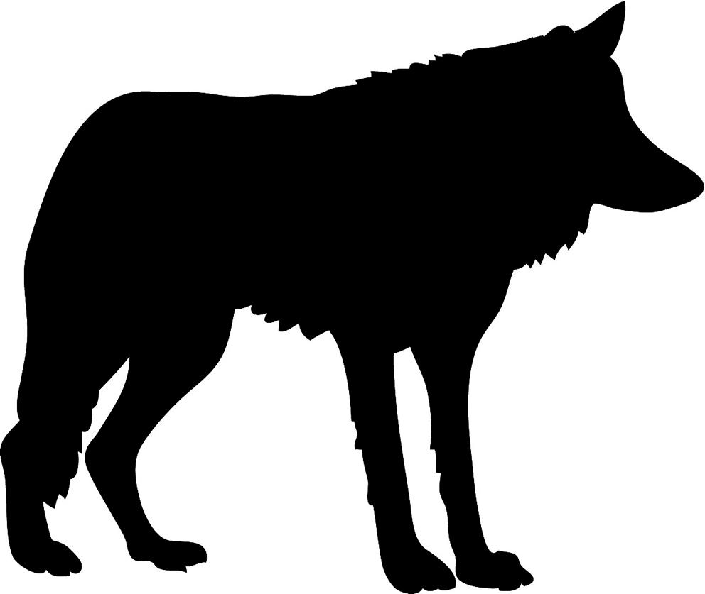 black wolf silhouette ...