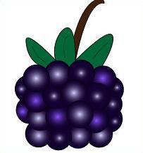 Free Blackberries Clipart