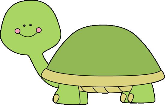 Blank Turtle-Blank Turtle-1