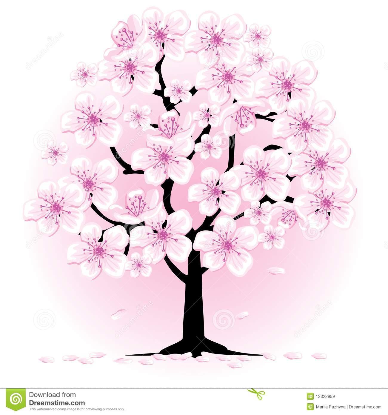 Blossom Cherry Tree Royalty .