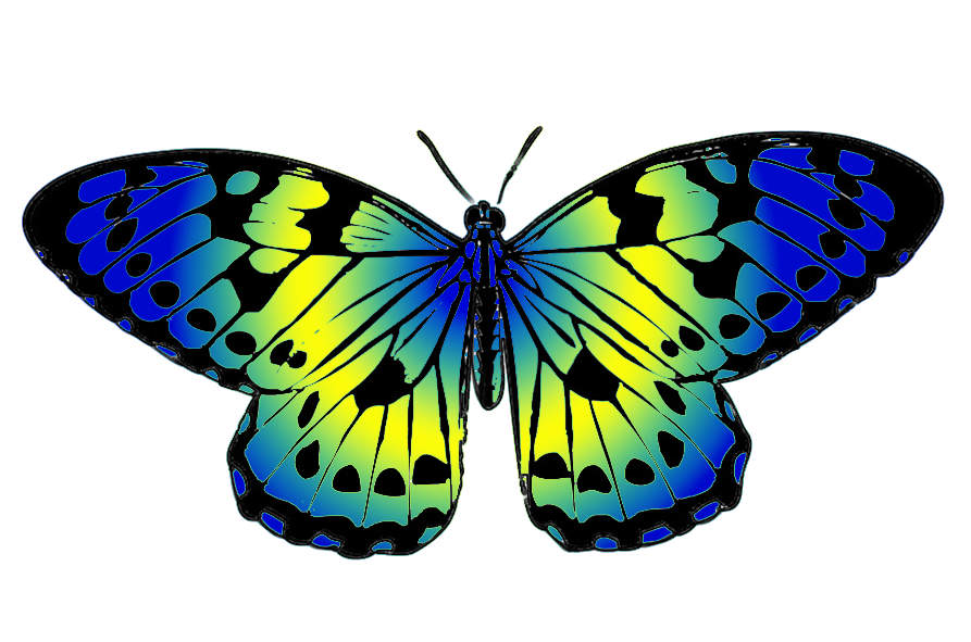 ... blue and yellow butterfly clip art