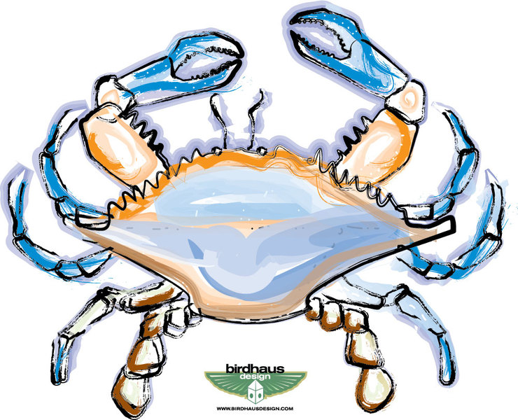Blue Crab Clip Art. Blue Crab Drawing-Blue Crab Clip Art. blue crab drawing-6