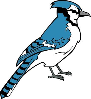 Blue Jay Clip Art Cliparts Co
