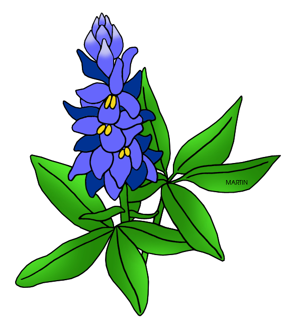 Bluebonnet Clip Art. Texas State Flower -Bluebonnet Clip Art. Texas State Flower - .-0