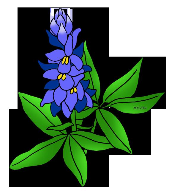 Bluebonnet Clip Art. Texas St - Bluebonnet Clip Art