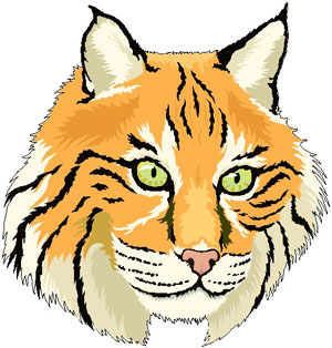 Bobcat Clipart Free Clipart .-Bobcat Clipart Free Clipart .-8