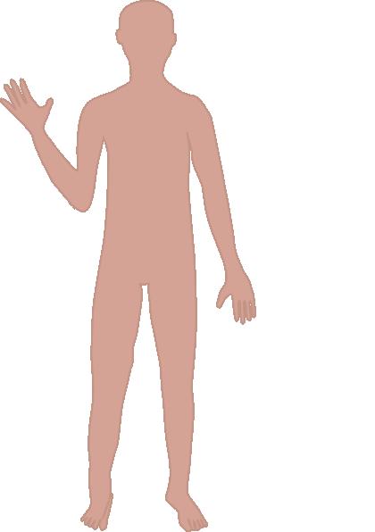 body clipart