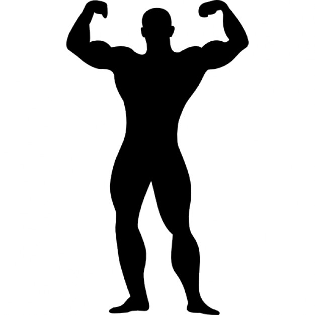 Body Muscles Clipart. Muscle cliparts