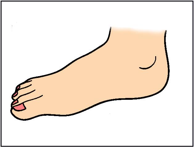 Clip Art Foot