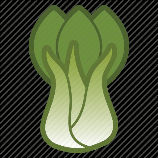 bok, choy, salad, vegetable icon