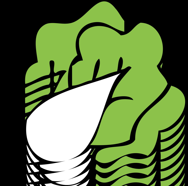 Cartoon Bok choy Napa cabbage Clip art - Vector cartoon Cute cabbage cabbage