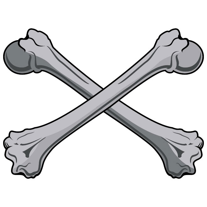 Bones Clip Art Free Vector-Bones Clip Art Free Vector-13