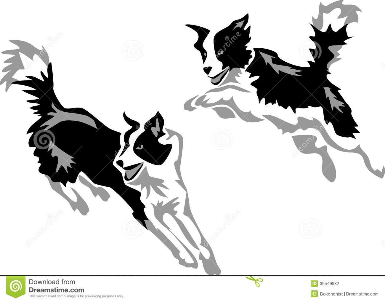Border Collie dog - Illustration u0026middot; Agility Stock Photography