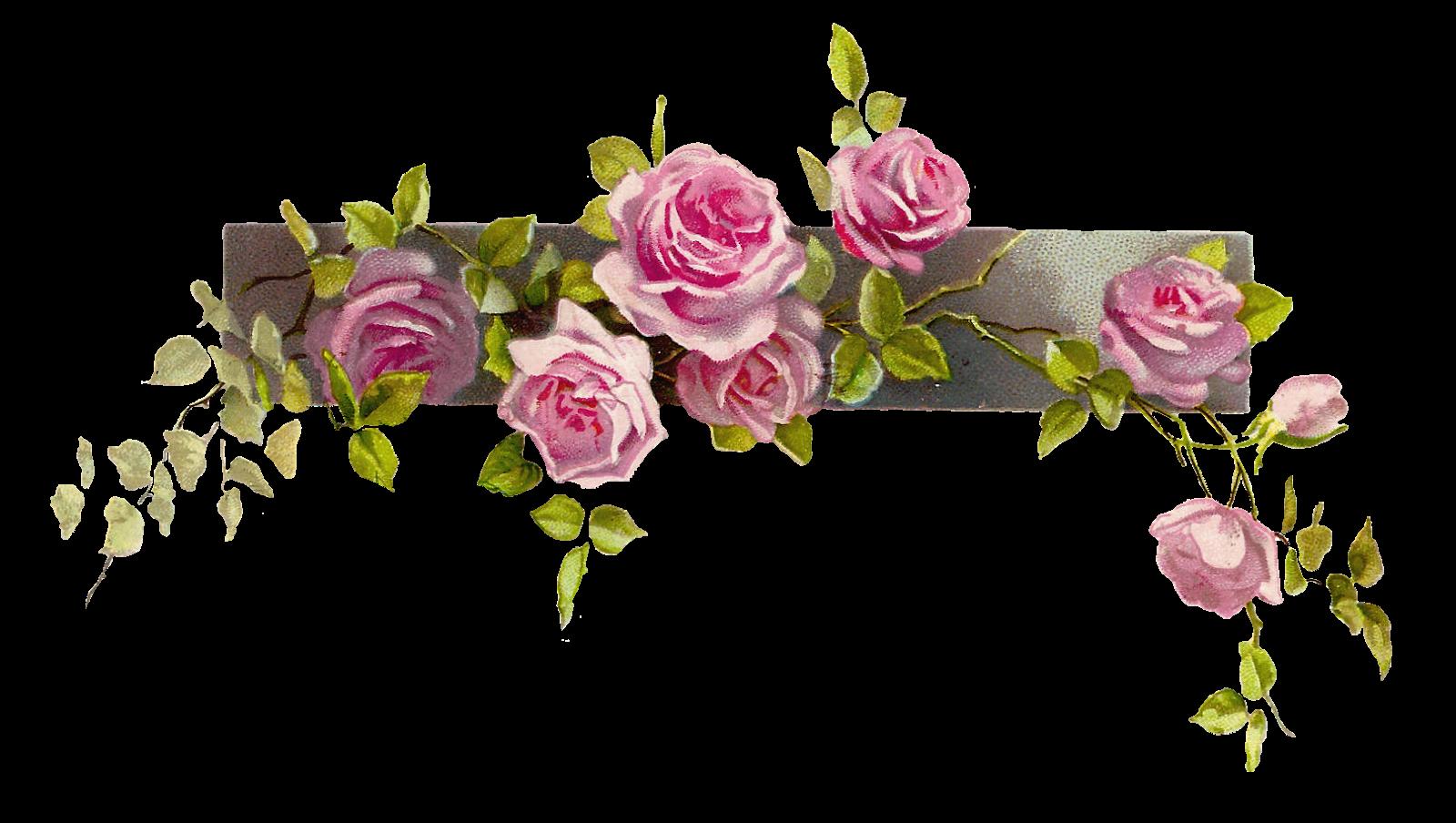 Border Flower Rose Line Free Images At C-Border Flower Rose Line Free Images At Clker Com Vector Clip Art-1