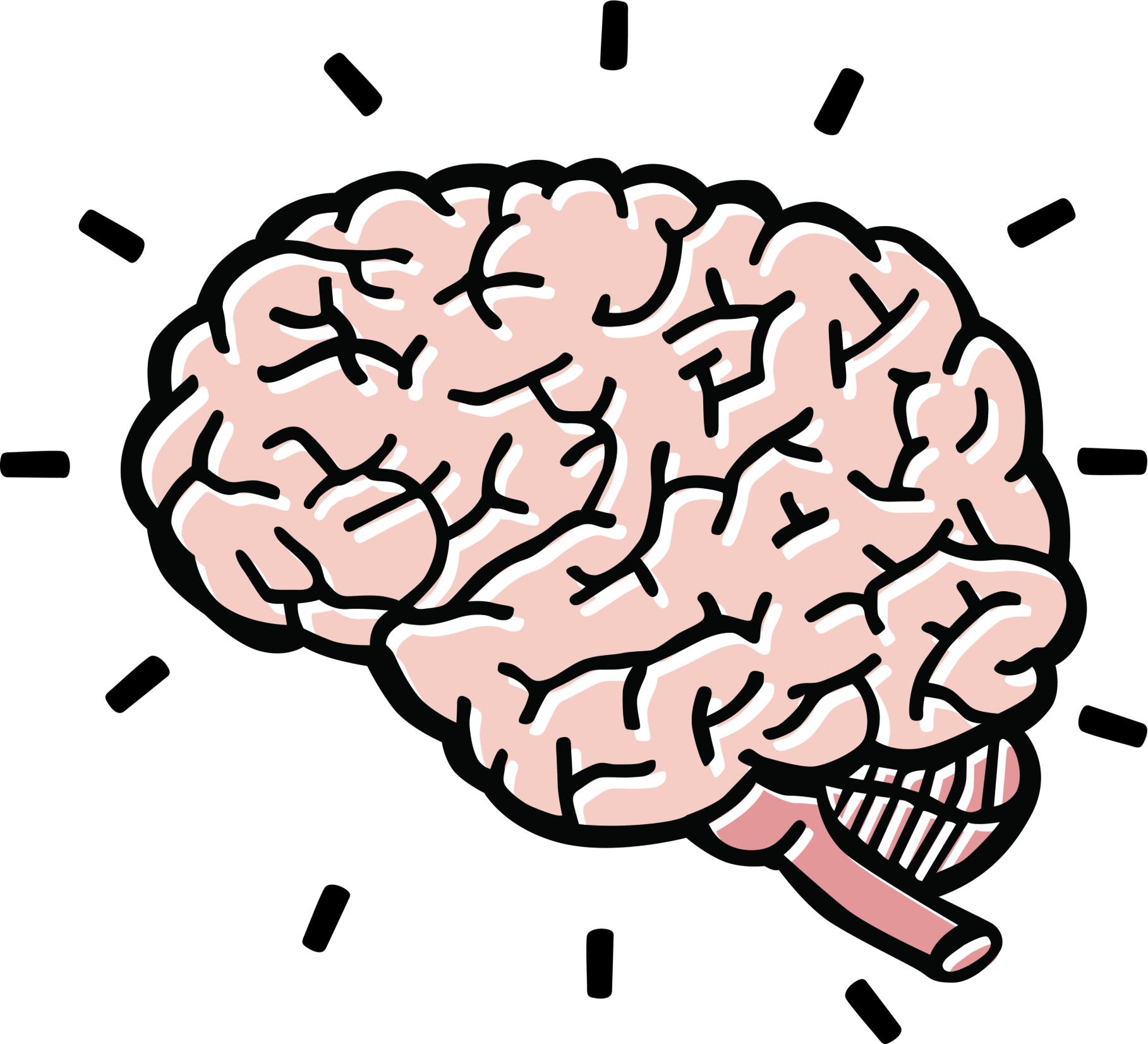 Brain clipart 4