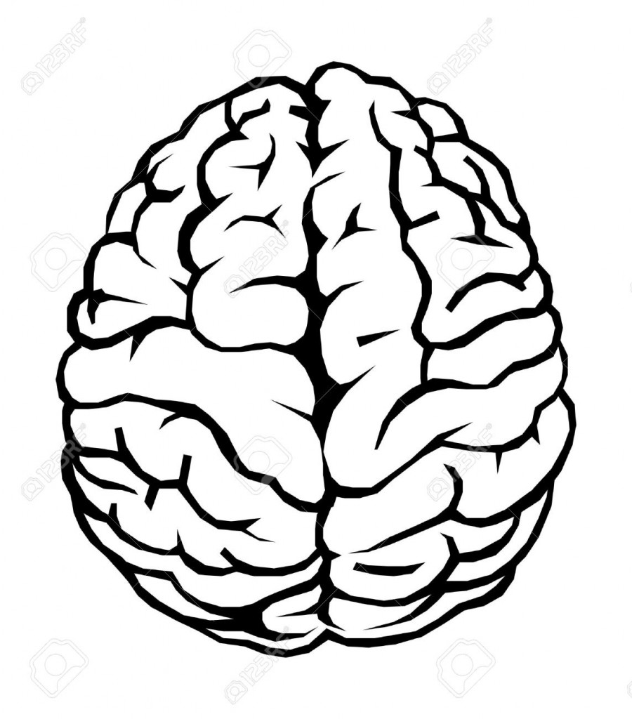 brain clipart - Clipart Of Brain