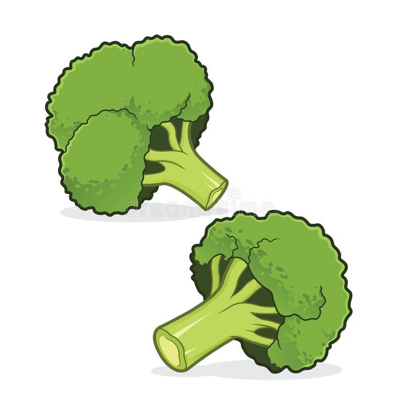 Broccoli-Broccoli-9