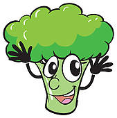 Broccoli; a broccoli