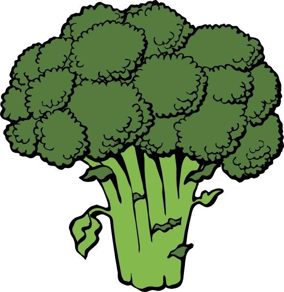 Broccoli clip art-Broccoli clip art-0
