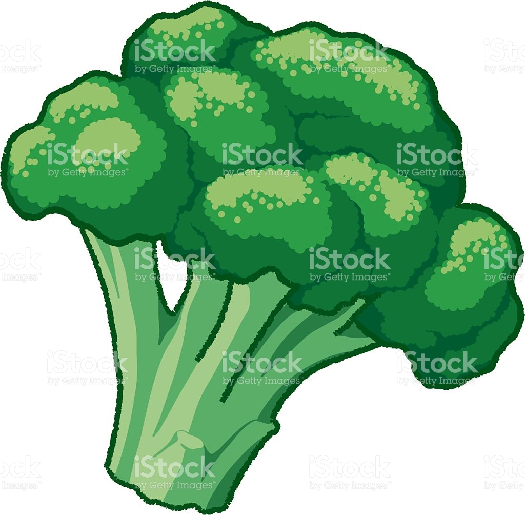 Broccoli royalty-free broccoli stock vector art u0026amp; more images of  antioxidant