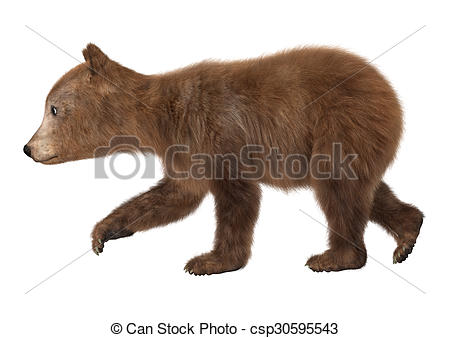 ... Brown Bear Cub - 3D digital render of a brown bear cub.