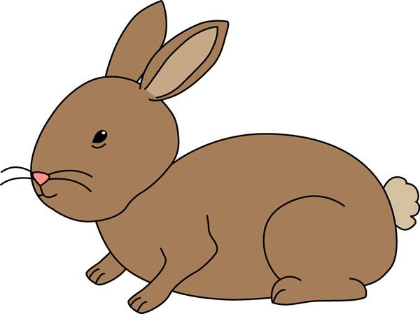 Brown Bunny Rabbit