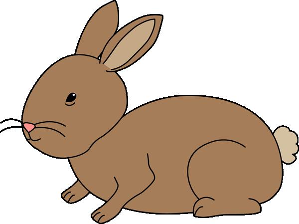 Brown Bunny Rabbit-Brown Bunny Rabbit-7