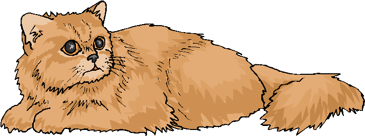 Brown Cat Sit On The Ground F - Cat Clipart Free