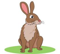 Brown Rabbit Clipart Size: 91 Kb