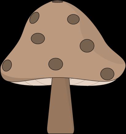 Brown Spotted Mushroom-Brown Spotted Mushroom-12
