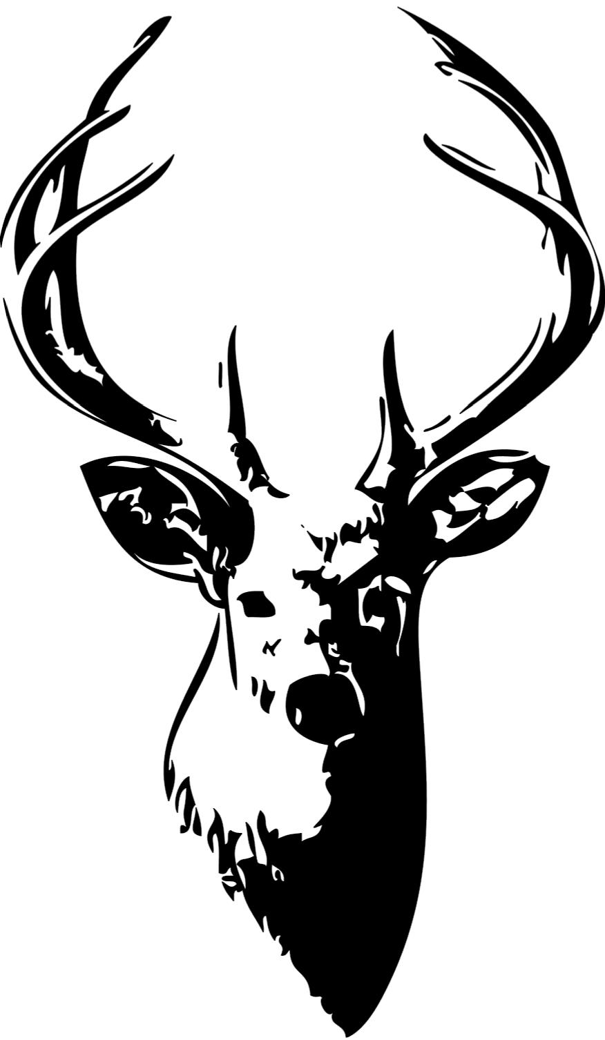 buck clipart. 21 Whitetail Deer Skull Drawings Free Cliparts That You Can Download