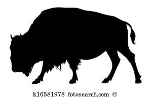 Buffalo-Buffalo-15