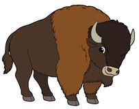 Buffalo clip art free clipart images