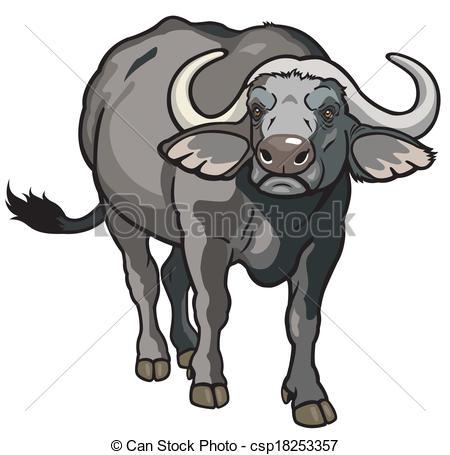 african buffalo - csp18253357