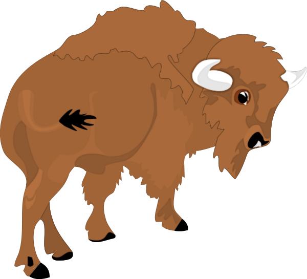 Free buffalo clipart image