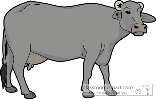 Buffalo clipart free images