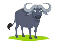 Water buffalo clipart. Size: 56 Kb