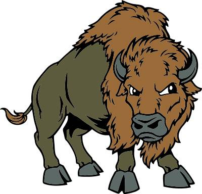 Buffalo mascot clipart kid