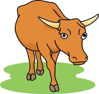 Buffalo Size: 98 Kb