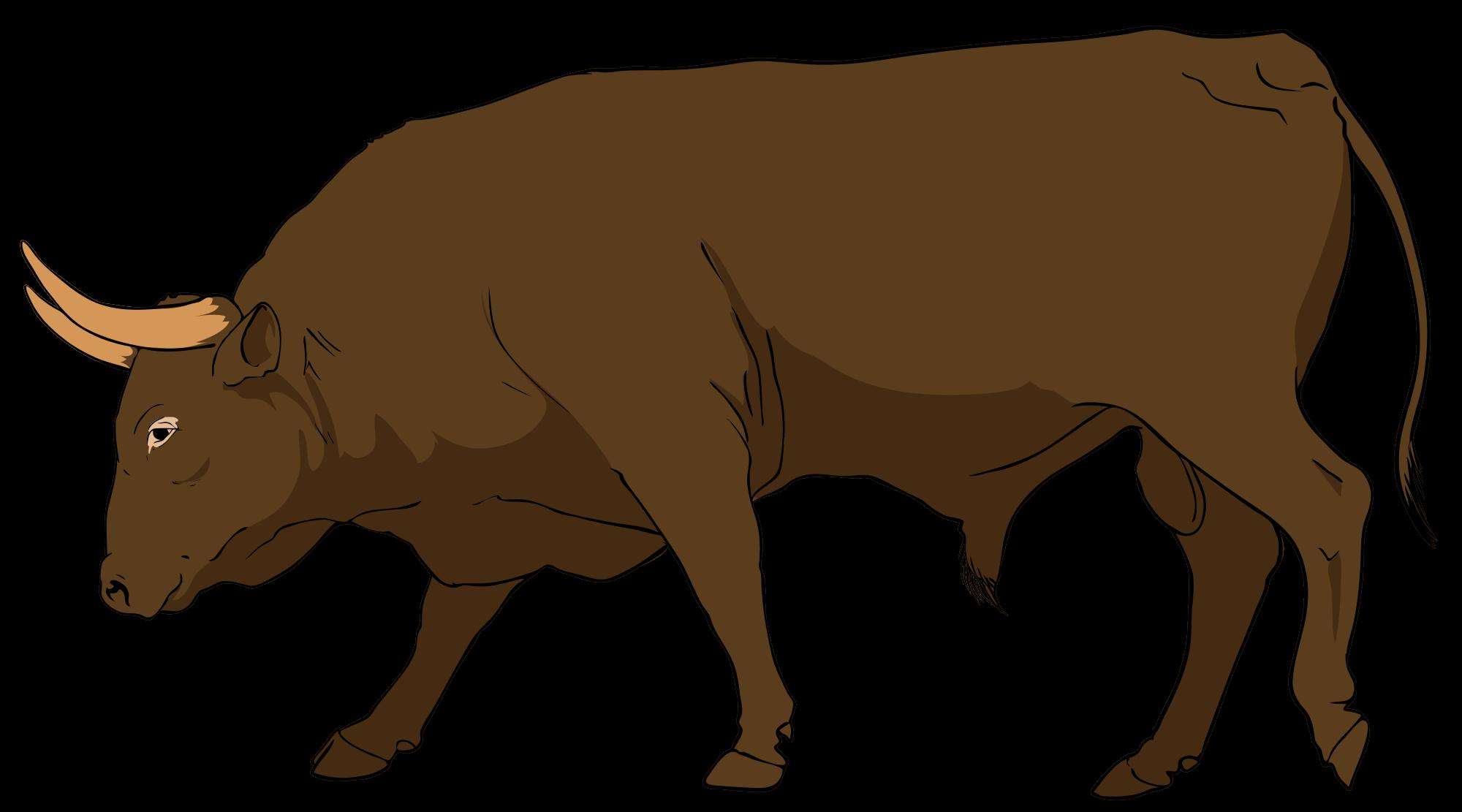 Bull Clipart