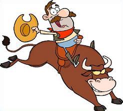 Bull Riding-bull riding-4