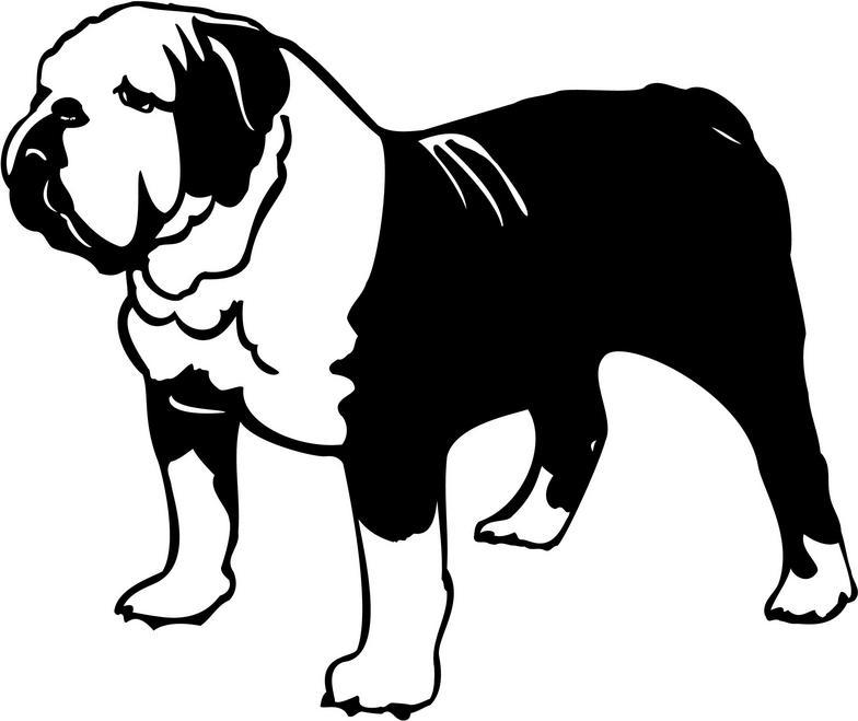 Bulldog Clipart Clipartion Com 2-Bulldog clipart clipartion com 2-9