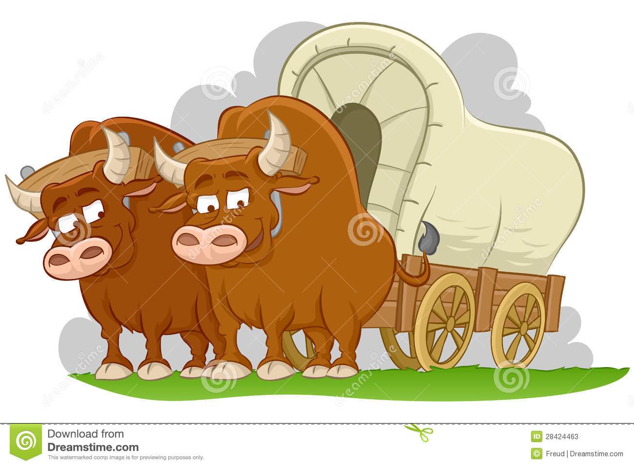 Bulls drawn covered wagon Stock Photos