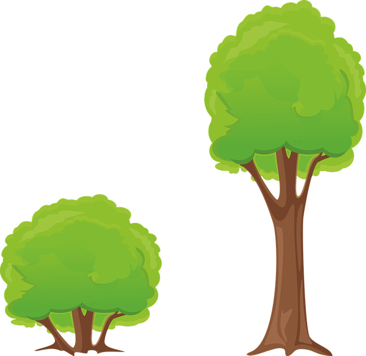 ağaç bush clipart doğa orman-ağaç bush clipart doğa orman-6